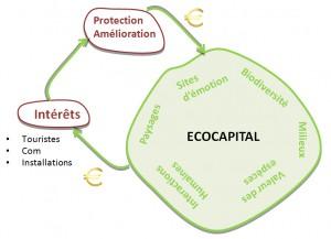 Eco Capital